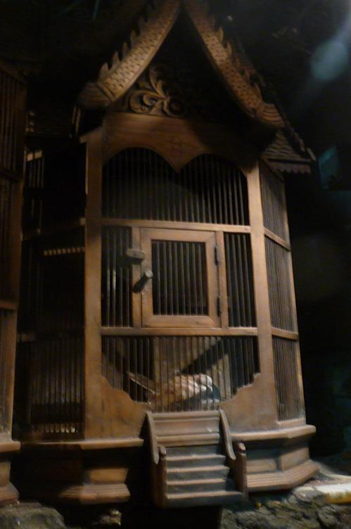 Bird cage at Felfela