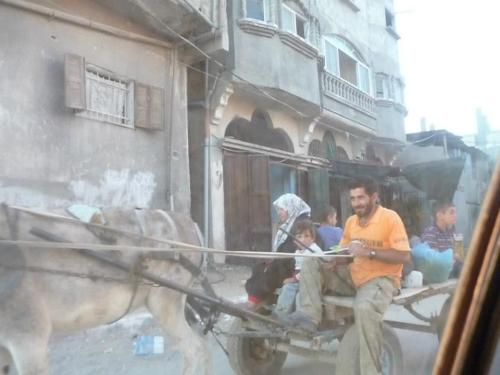 Horse and cart in Gaza.