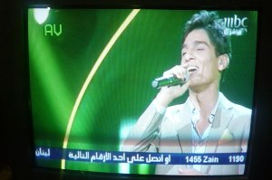 Mohammed Assaf performing on Arab Idol 2013