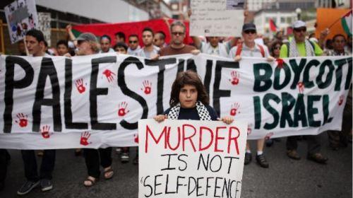 Gaza 2014 1