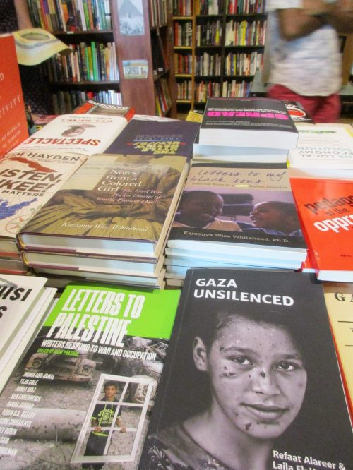 Gaza Unsilenced - Just World Books