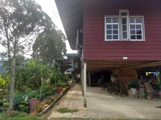 Bario guesthouse 4