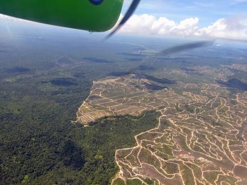 Sarawak aerial view 5